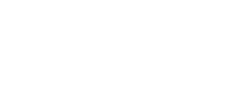 Finesse Bodyline Clinic Logo